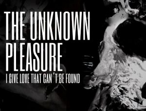 The unknown pleasure Ritus Lyrics by Florian Grey